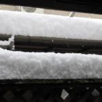 久しぶりの大雪!