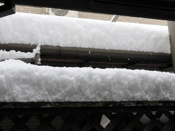 【広島】久しぶりの大雪になりました!